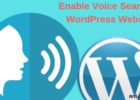 Enable Voice Search On WordPress Websites