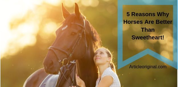 5 Reasons Why Horses Are Better Than Sweetheart!