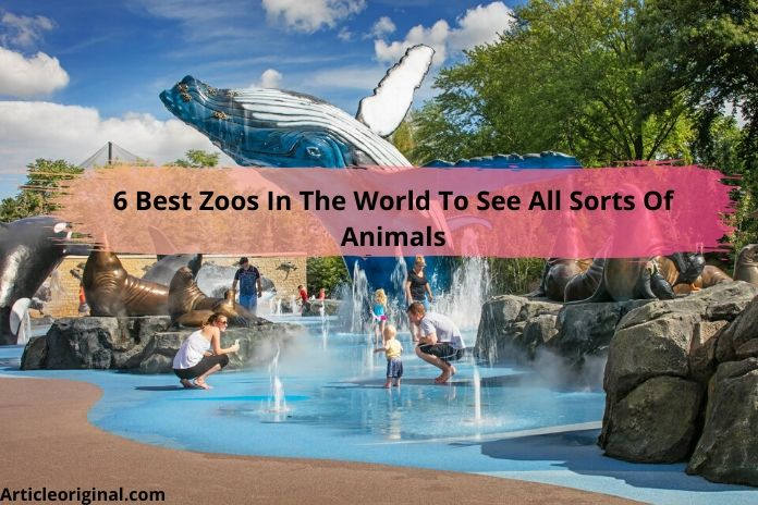 6 Best Zoos In The World To See All Sorts Of Animals